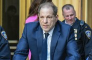 Harvey Weinstein's lawyer doesn't think he'll go for bail