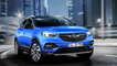 Massmotiomn_Teamedia_Opel_GrandlandX
