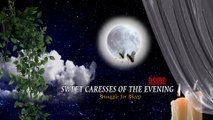 Sweet Caresses of the Evening #ASMR #SnuggleForSleep