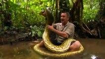 Ce reporter se jette sur un anaconda pour l'attraper