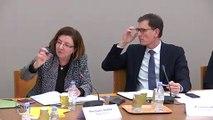 260220 Commission d'enquête sur la dépollution des sols : auditions des associations de défense de l'environnement suite