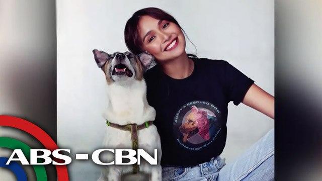 Kathryn Bernardo, isa nang animal welfare advocate   UKG