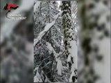Pericolo valanghe su tutto l'arco alpino, i consigli dei Carabinieri (03.03.20)