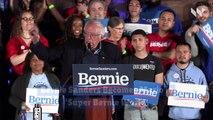 Bernie Sanders Becomes Mario in 'Super Bernie World'