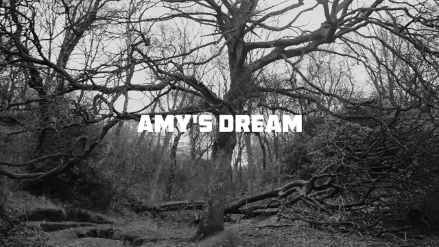 Amy's Dream