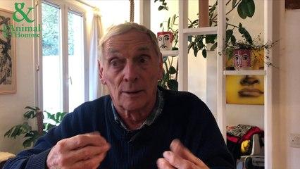 Interview 1 de Bernard Devaux : L'intelligence à pas de tortues