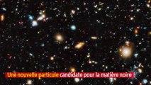 Une nouvelle particule candidate pour la matière noire