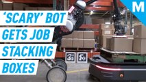 Once terrifying Boston Dynamics robot rolls up sleeves for warehouse job
