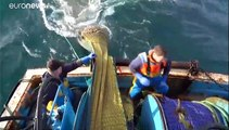Les zones de pêche, un enjeu crucial au cœur des négociations entre la Grande-Bretagne et l'UE