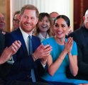 5 Royal Luxuries Harry and Meghan Will Give up