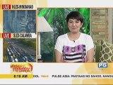 Libu-libong fans sa Cebu, mainit na sinalubong sina Kathryn at Daniel