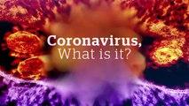 Get the facts on coronavirus