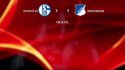 Resumen partido entre Schalke 04 y Hoffenheim Jornada 25 Bundesliga