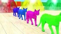 Animation CartoonoPedia - Gorilla Learn Colors Video - Wild Animals Educational Video for Kids