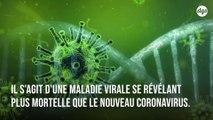 Le Nigeria fait actuellement face à une épidémie virale plus mortelle que le nouveau coronavirus