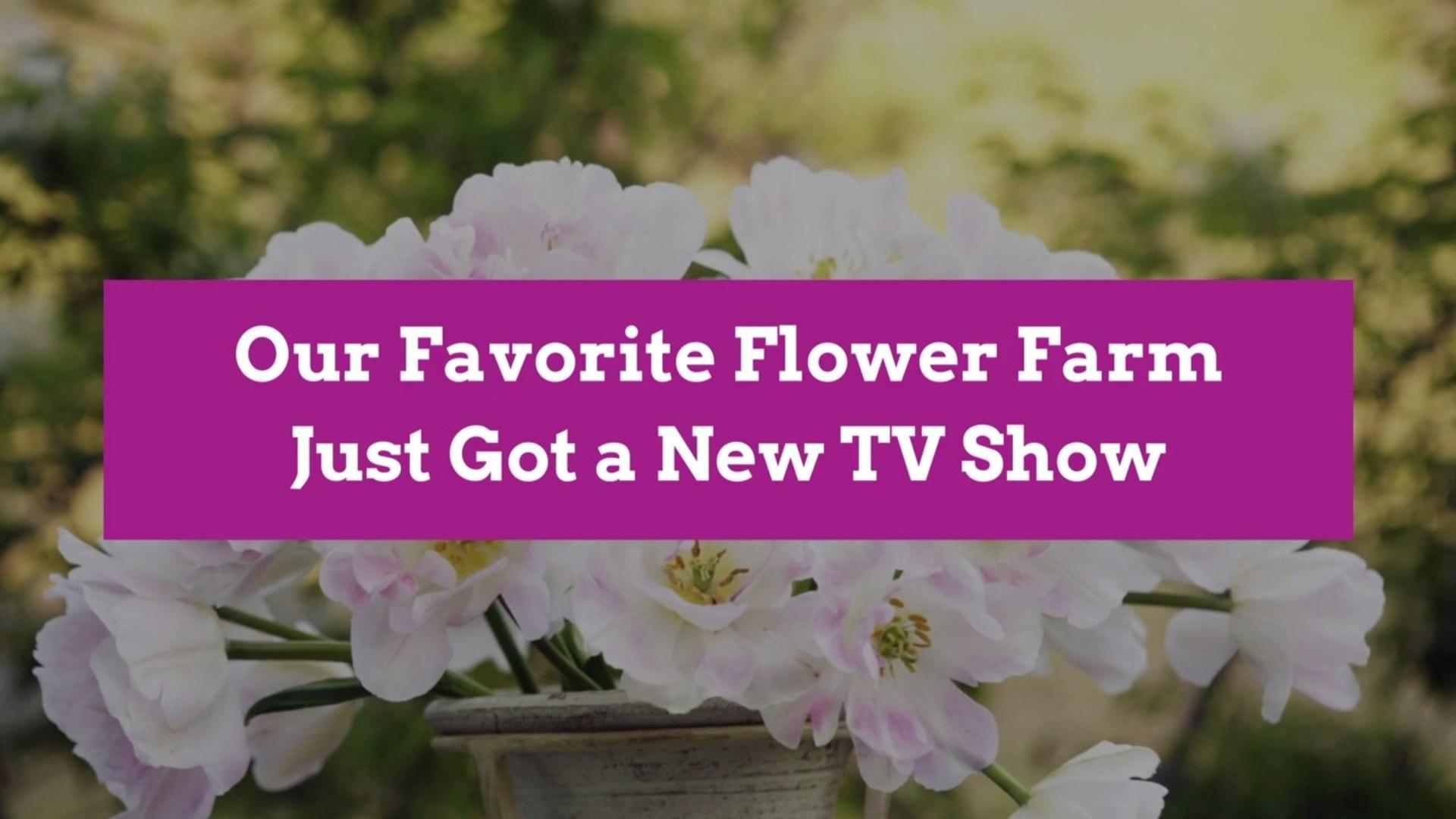 Our Favorite Flower Farm Just Got a New TV Show