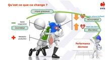 La chaleur : effets aigus et acclimatation (S. Racinais)