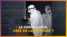 Le coronavirus a-t-il été crée en laboratoire ?