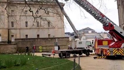 Sauvetage d'agents municipaux dans l'arbre de la Liberté à Bayeux