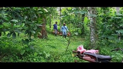 Durian Slumbung Kediri, Buah Bekas Gigitan Tupai Malah Diminati