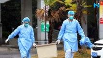 Coronavirus update: India suspends all tourist visas, coronavirus cases rise to 68