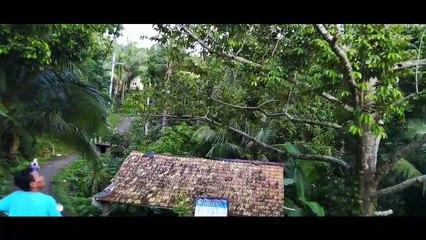 Durian Lokal Bawean, Manisnya Terkenal Melebihi Varietas Mancanegara