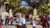 Disney Introduces New Perks Program For Annual Disneyland Passholders!