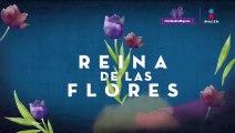 Ver Capitulo 21 de Reina De Las Flores