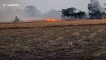 Thick cloud of smoke from grass fire blown across field by gust of wind in Thailand