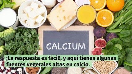 ¿Cómo conseguir calcio de fuentes vegetales?