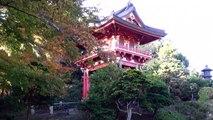 7est-Lo llevamos hasta los jardines zen -120320