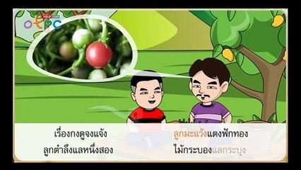 สื่อการเรียนการสอน เรียนรู้เรื่อง แม่ กงป.3ภาษาไทย