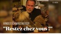 Confiné avec son âne et son poney, Arnold Schwarzenegger vous invite à rester chez vous pour lutter contre le coronavirus