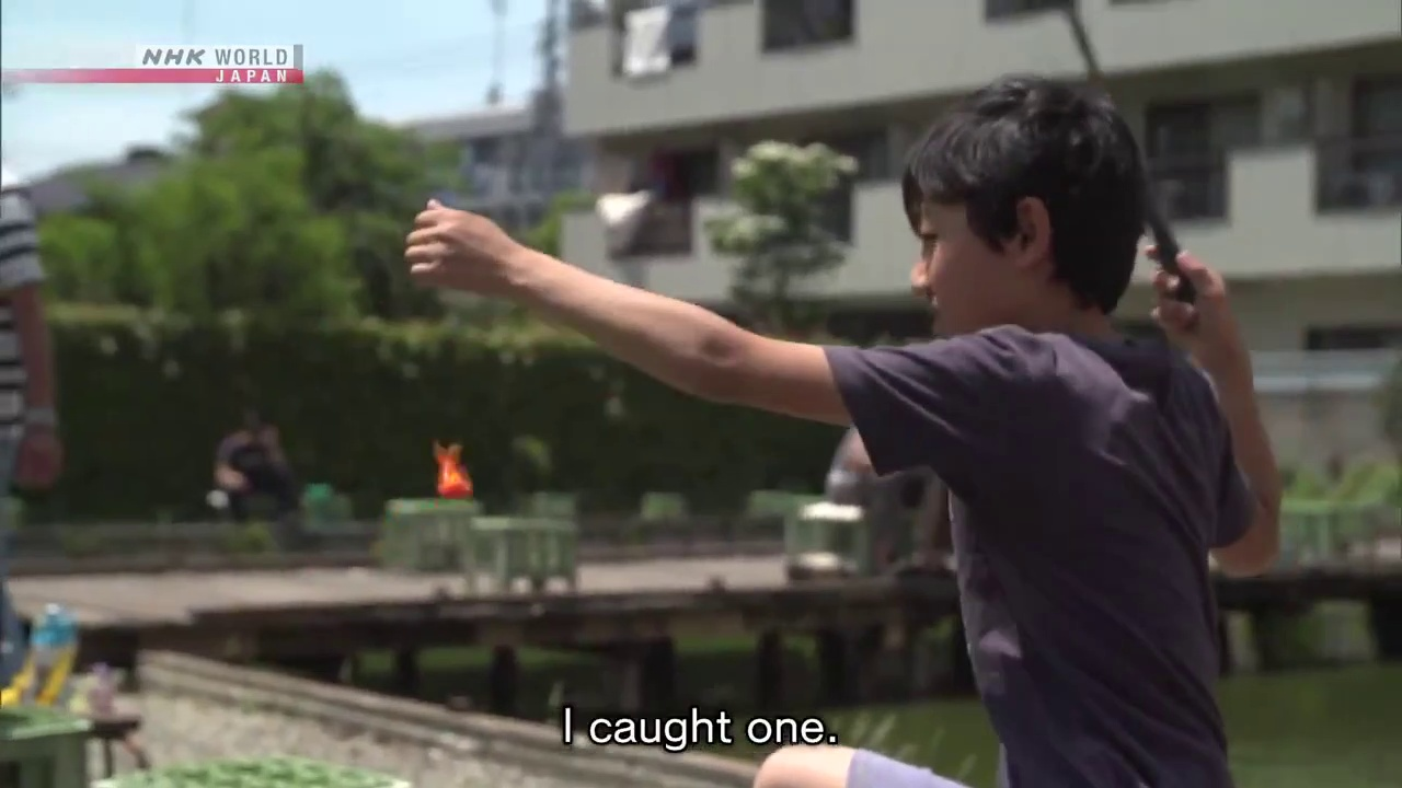 Document 72 Hours – Catching Goldfish at a Fishing Pond in Tokyo