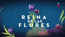 Ver Capitulo 27 de Reina De Las Flores