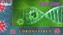 Coronovirus-COVID-19 Symptoms | Precautions to be taken for preventing Coronovirus | Coronovirus Mythbusters | Fight Coronavirus  | Viral Rocket