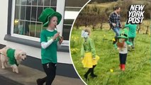Lil' St. Patrick's Day parades put on by families across Ireland