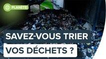 Pensez-vous trier vos déchets correctement ?   Futura