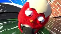 ✅ Pájaro Cucú #2 | Dibujos Animados en Español | Compilación De Dibujos Animados Infantiles