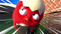 ✅ Pájaro Cucú #28 | Dibujos Animados en Español | Compilación De Dibujos Animados Infantiles