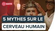 5 mythes sur le cerveau humain   Futura