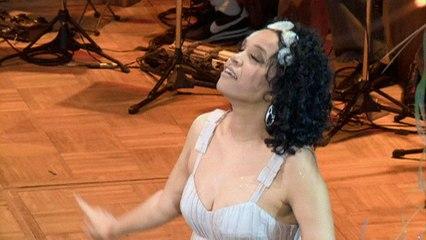 Teresa Cristina - Capitão Do Mato