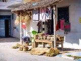 Découvrir la Tunisie autrement ❤️ Village de Hergla - Sousse Tunisie