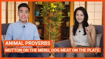 Animal Proverbs: Mutton On The Menu, Dog Meat On The Plate | Intermediate Lesson | ChinesePod