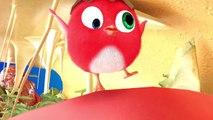 ✅ Pájaro Cucú #4 | Dibujos Animados en Español | Compilación De Dibujos Animados Infantiles