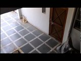Ghost caught on home CCTV camera   Real cctv ghost caught footage    SCARY