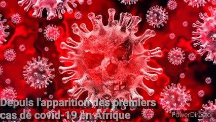 Lutte contre le Coronavirus : Certains chefs d'Etat africains se servent des réseaux sociaux