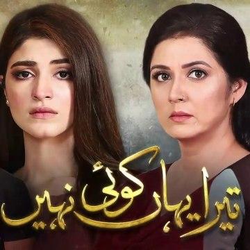 Tera Yahan Koi Nahin Episode 24 HUM TV Drama 23 March 2020