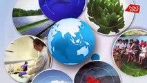 Petit tour de la gastronomie polynésienne - Positive Outre-mer (17/03/2020)