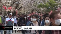 Japanese go out en masse to celebrate cherry blossom season despite coronavirus outbreak